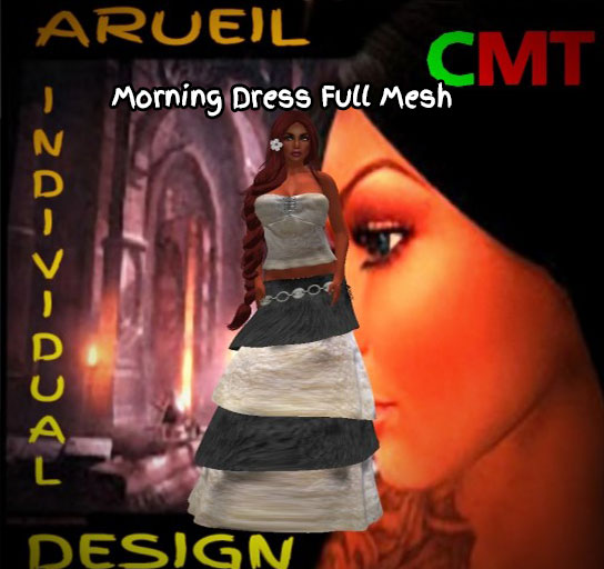Morning Dress Full Mesh